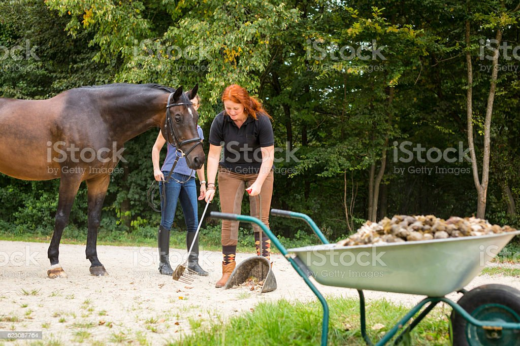 People and Horses on Horse Ranch stock photo