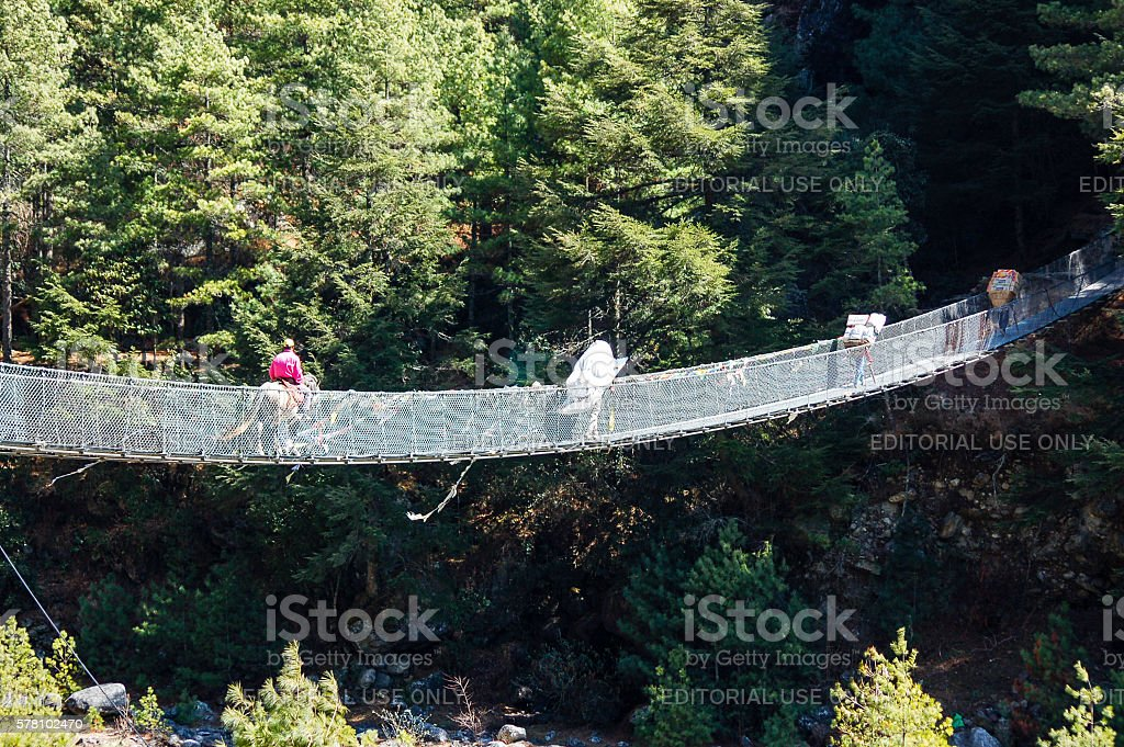 People and mule on rope bridge stock photo