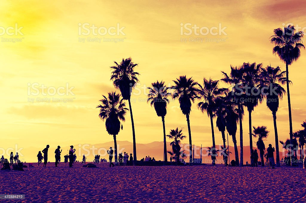 People and palm trees at Venice Beach Los Angeles California stock photo