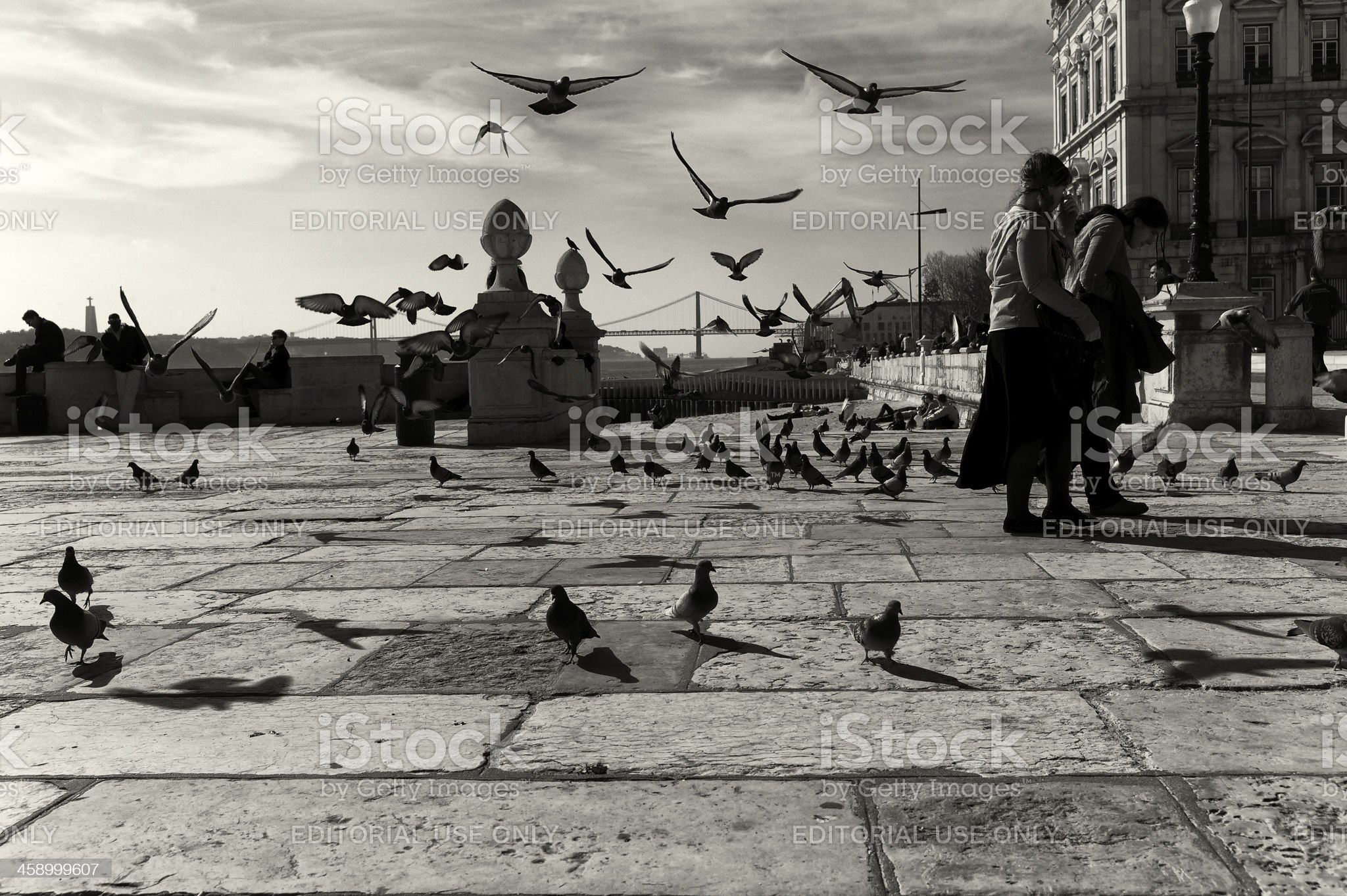 People and Pigeons in Lisbon royalty-free stock photo