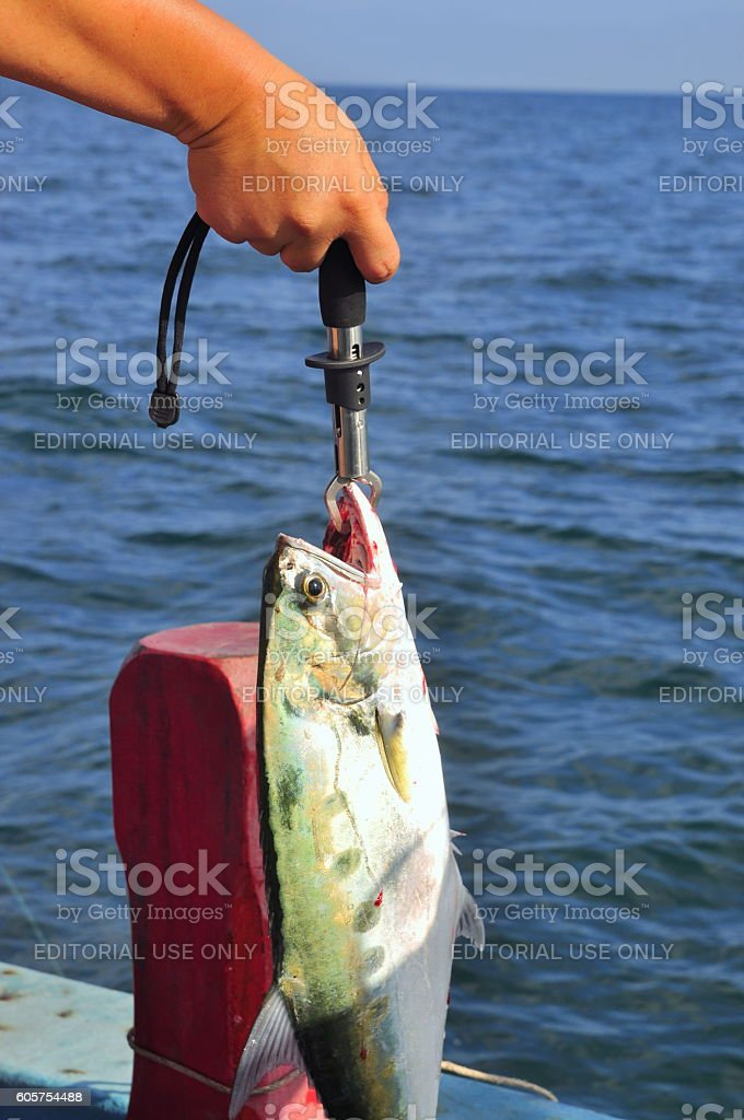 People are fishing for entertainment in Vietnam stock photo