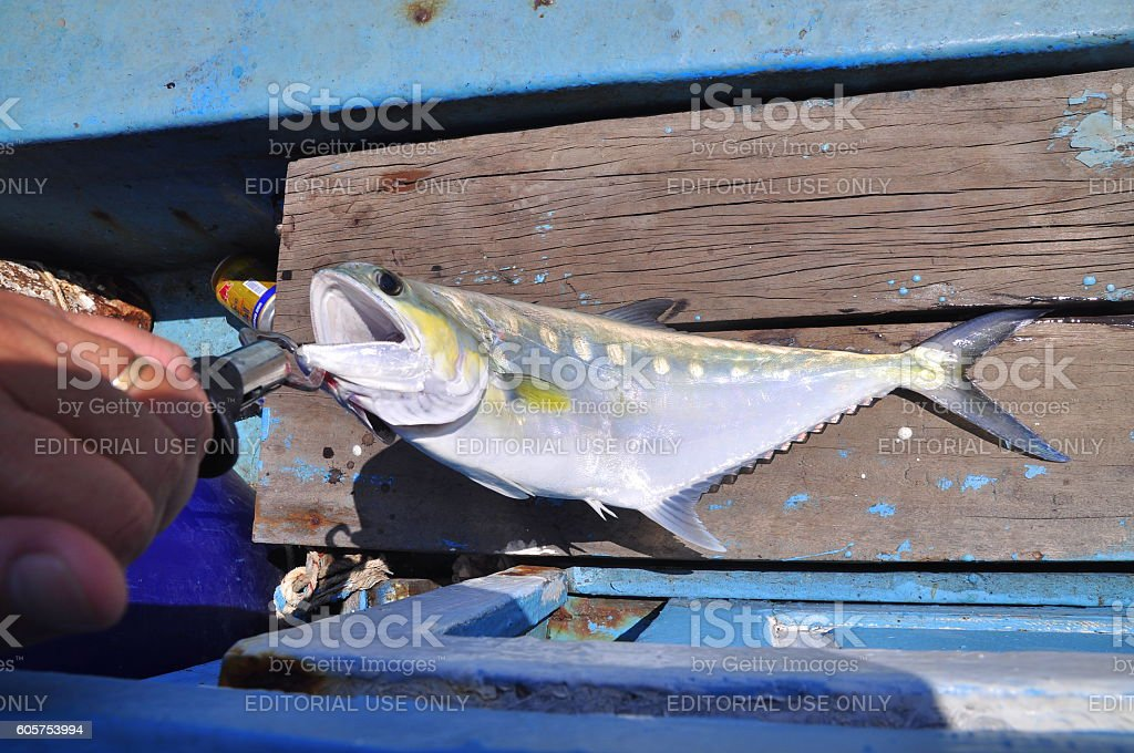 People are hook fishing for entartainment in Vietnam stock photo