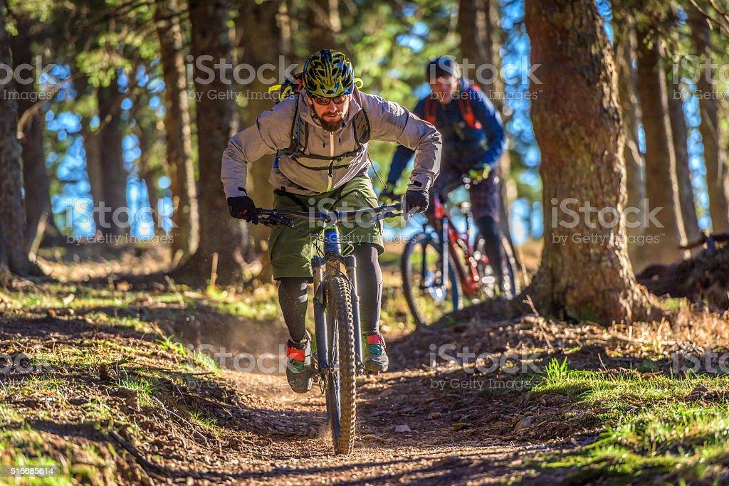 People enjoying mountain biking stock photo
