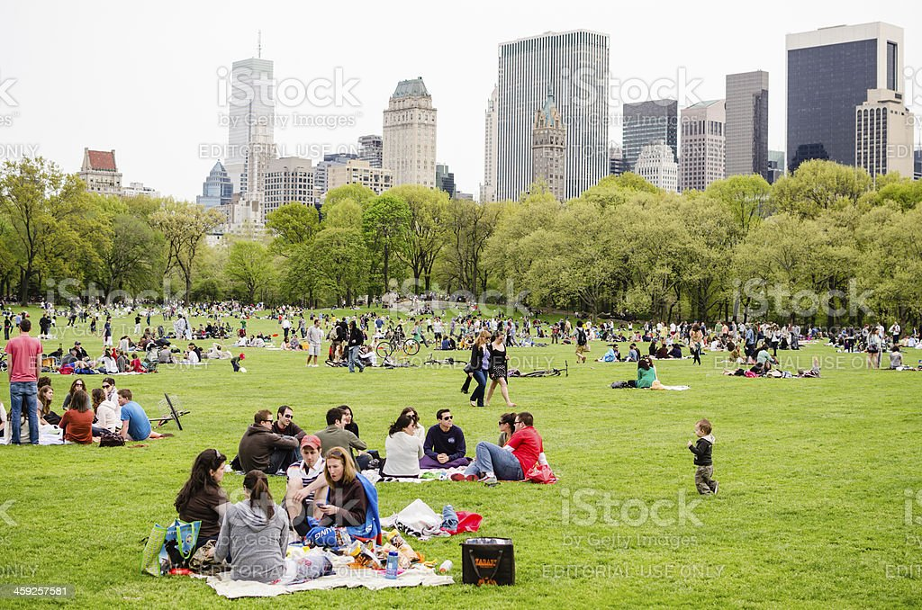 People enjoying picnic in Central Park, New York City stock photo