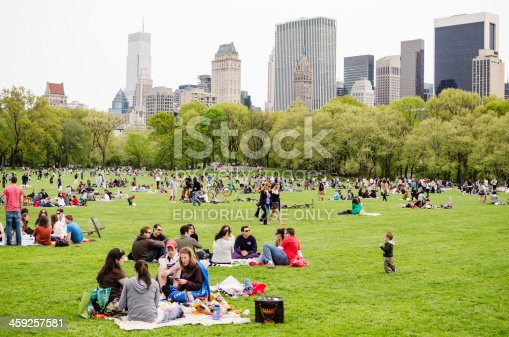 People enjoying picnic in central park new york city stock for Central jardin rixensart