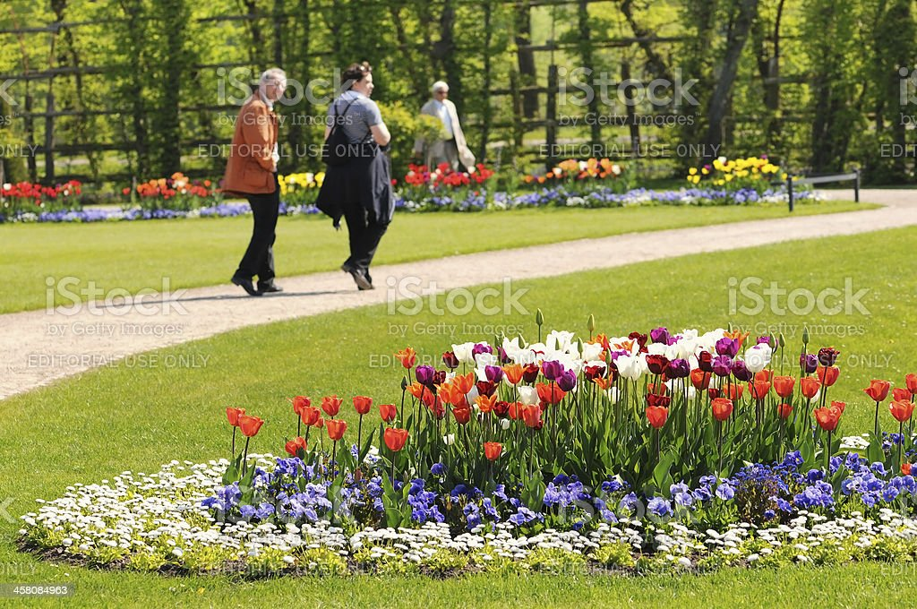 People enjoying springtime in part with tulip flower bed stock photo
