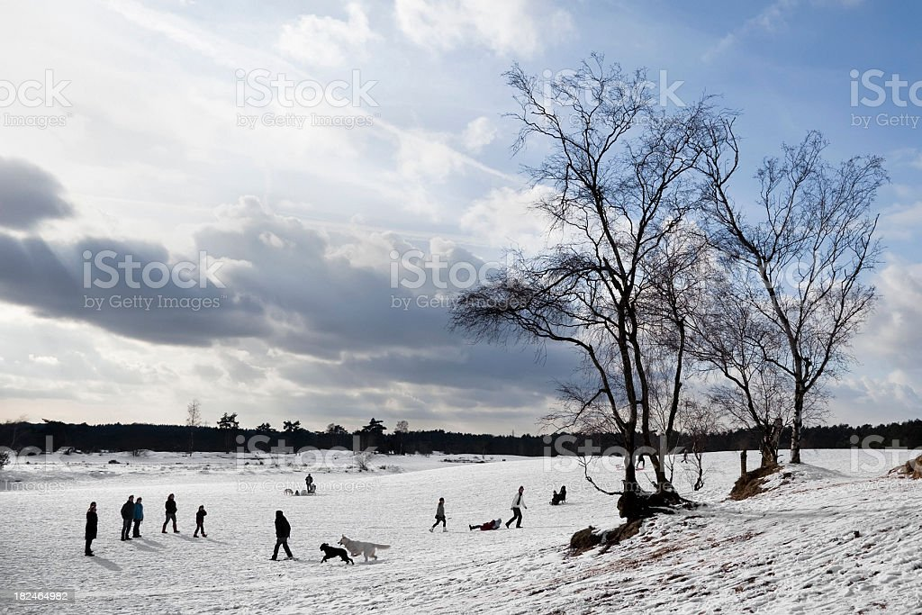 People enjoying the snow royalty-free stock photo