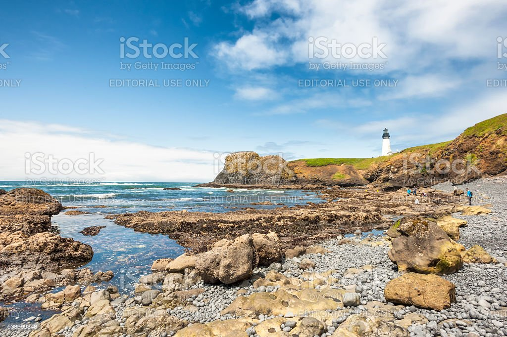 People explore tidepools and Yaquina Head State Park stock photo