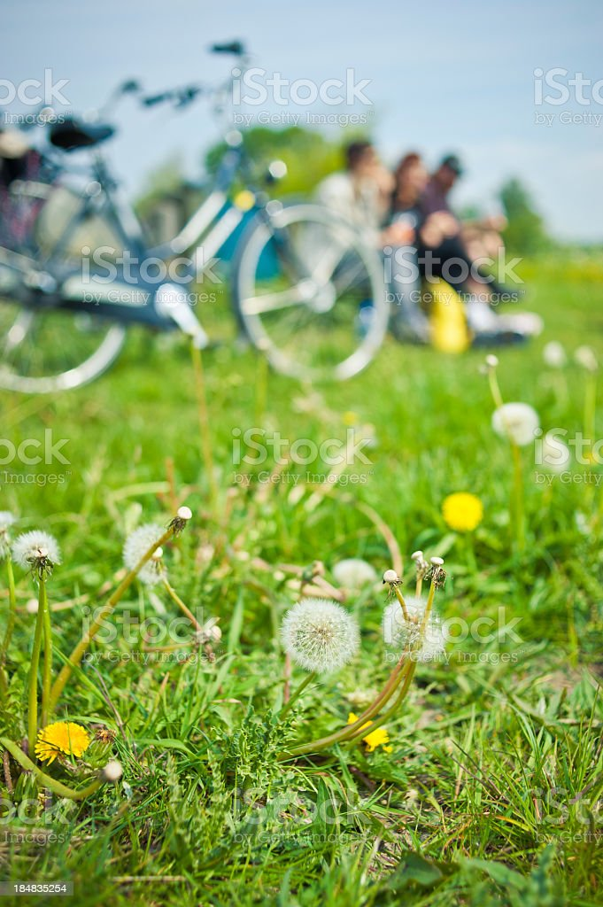 People Having Picnic In A Field, Holland royalty-free stock photo
