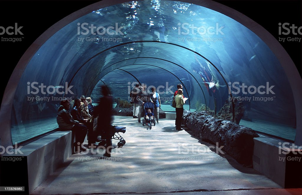 People in a water tunnel. stock photo