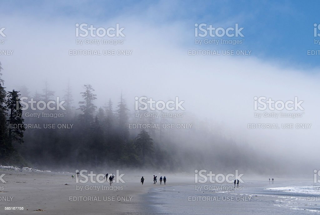 People in the Mist at Long Beach in Tofino, Canada stock photo