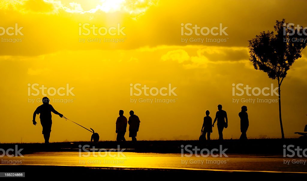 People in the park royalty-free stock photo