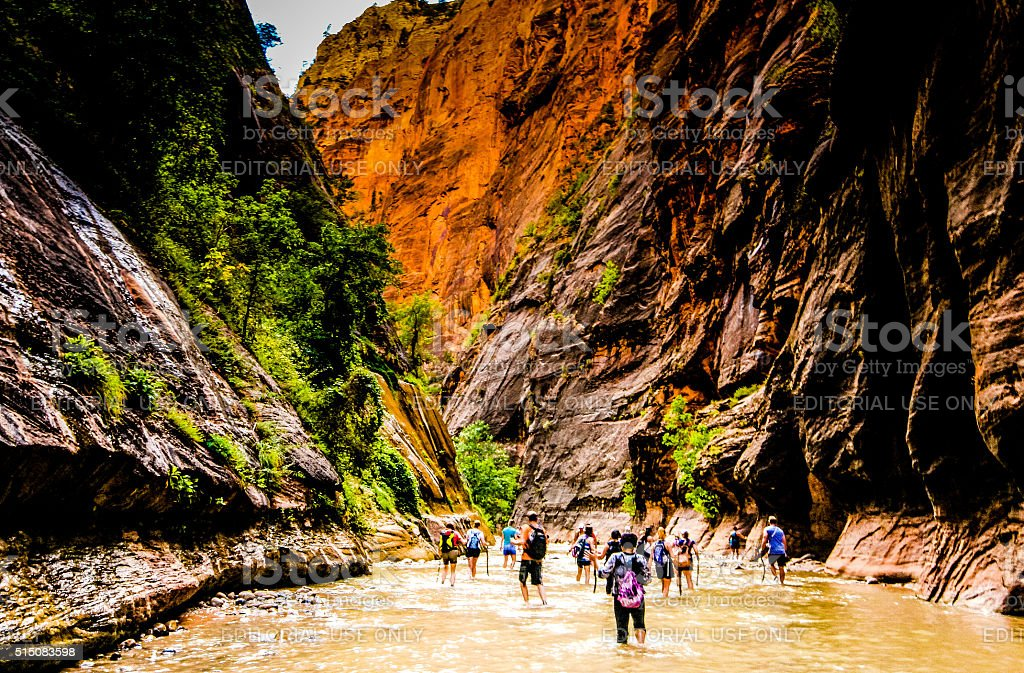 People in Zion's Narrows stock photo