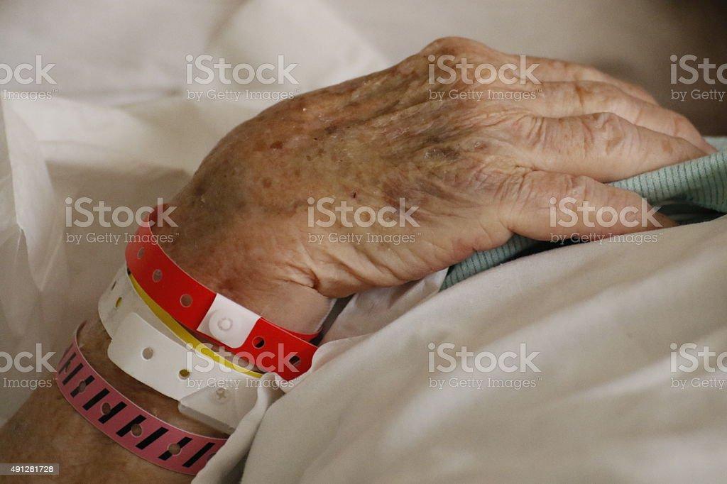 People: Older woman's hands stock photo
