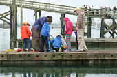 People on dock looking at crab pot