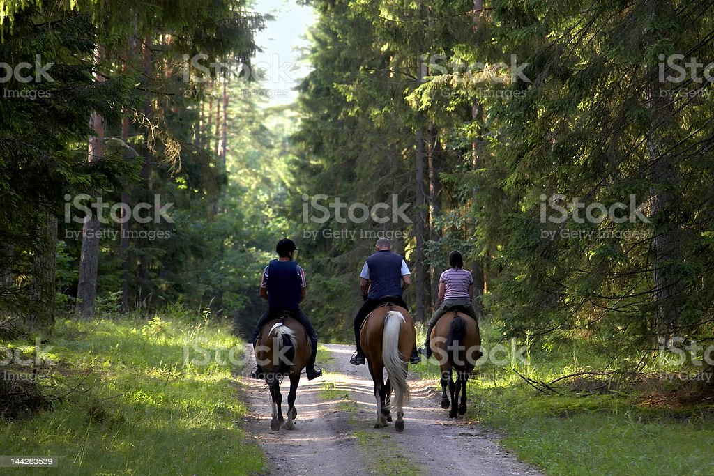 people on horse stock photo