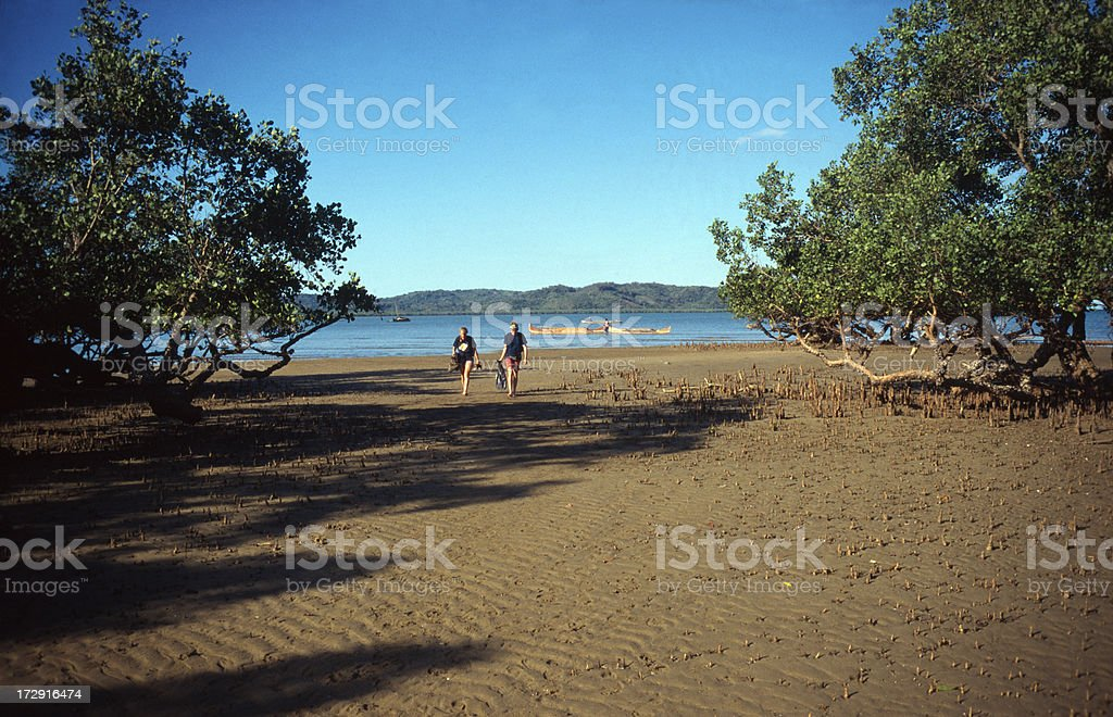 People on mangrove beach stock photo