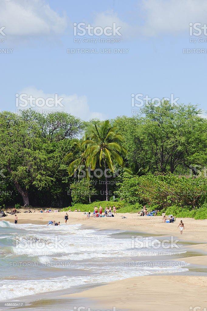 People On Maui Beach stock photo