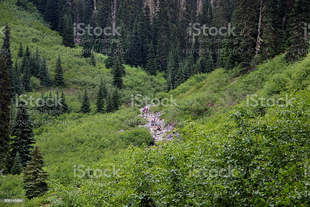 People on taril to Joffre lakes stock photo