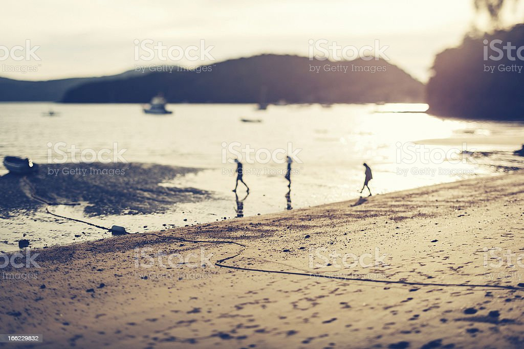 People on the Beach at Sunset royalty-free stock photo