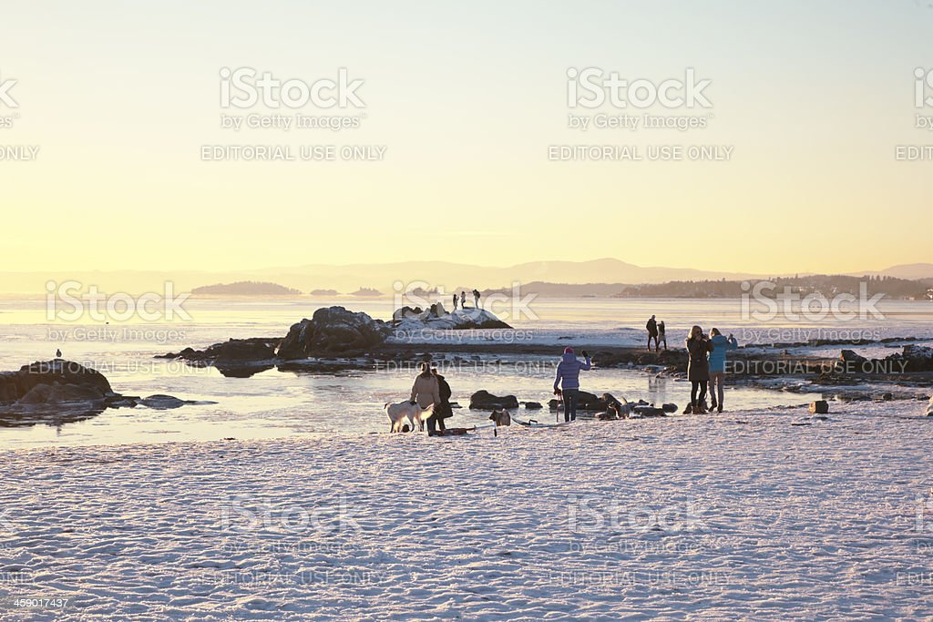 People on the beach at sunset. stock photo