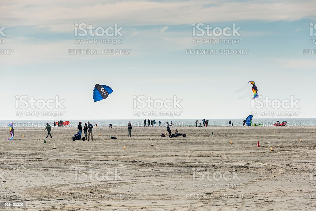 people on the beach having stock photo