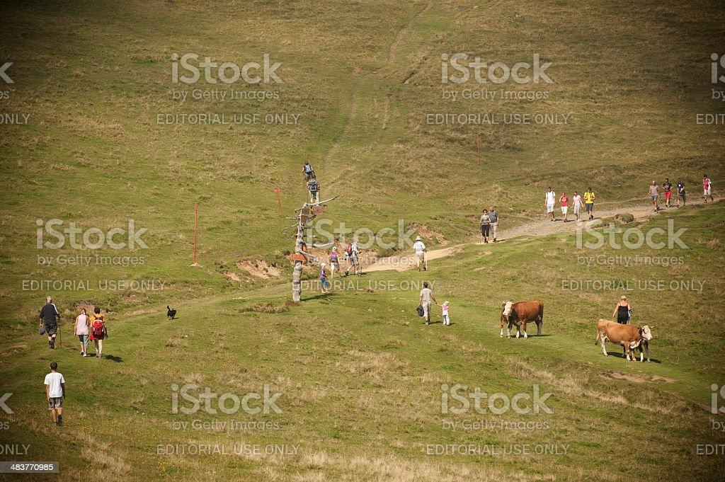 People on Velika Planina stock photo