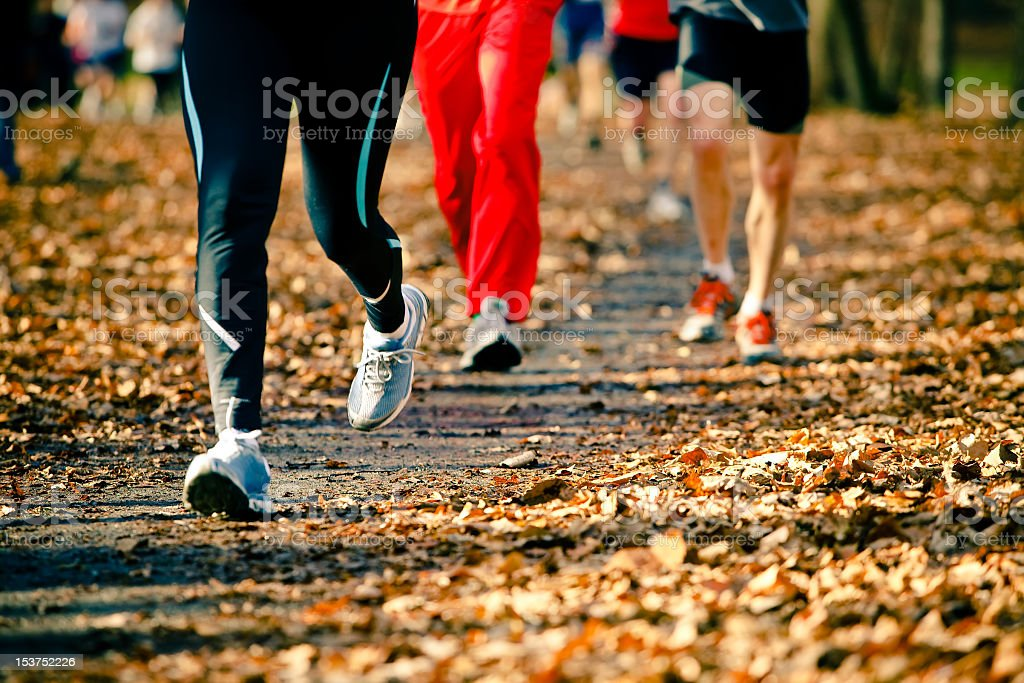 People running in the autumn race royalty-free stock photo