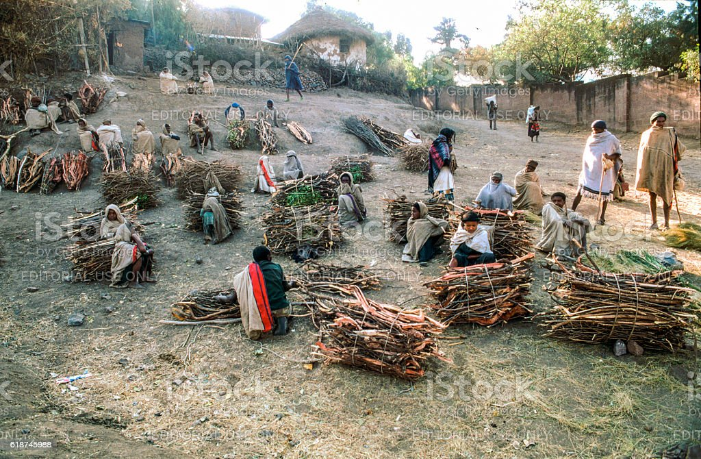people sell firewood at the morning market in Lalibea stock photo