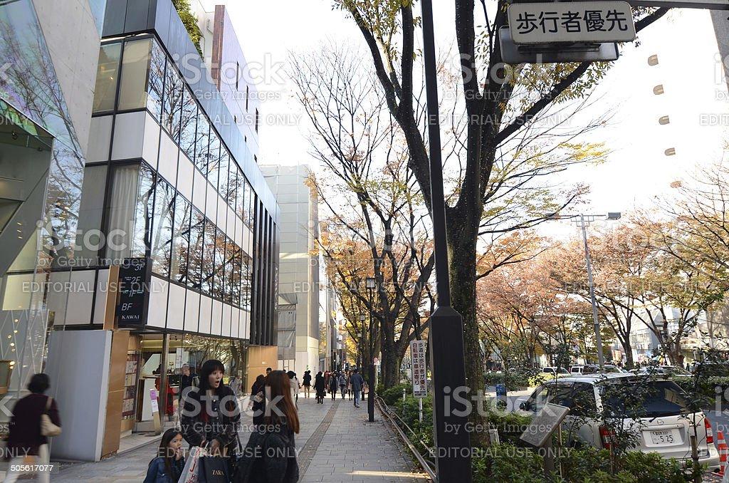People shopping at Omotesando Street stock photo