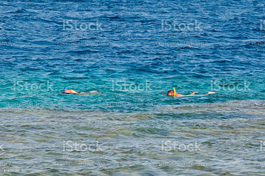 People snorkeling at reef in Dahab, Egypt stock photo