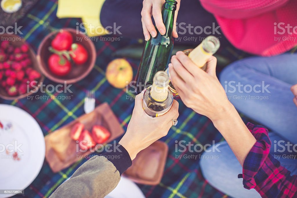 People toasting drinks on picnic stock photo