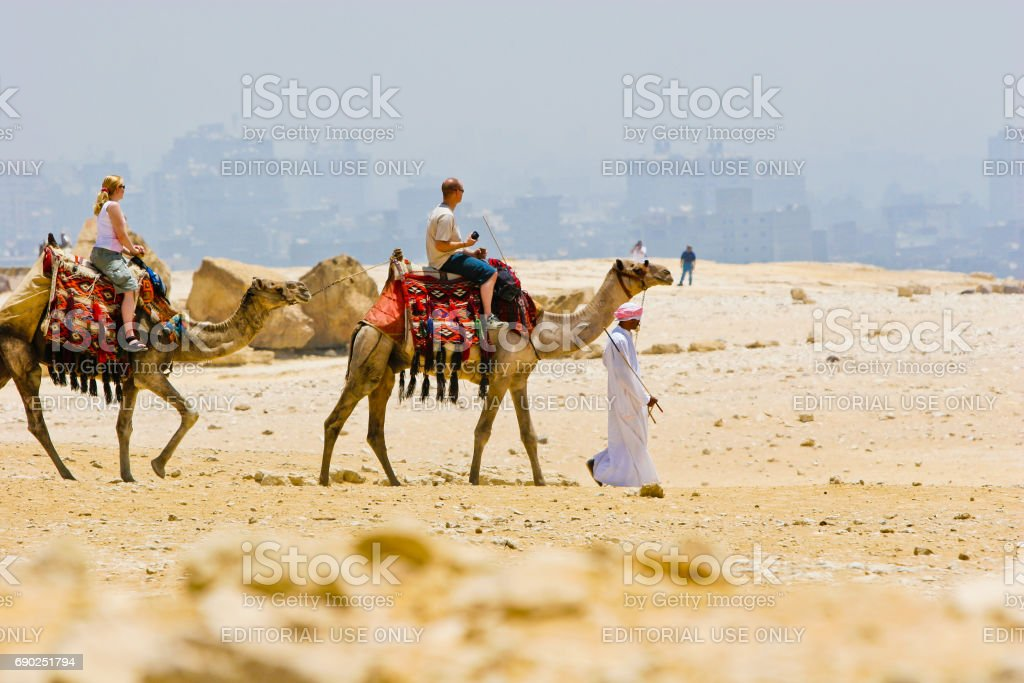 People traveling on camels in egypt desert stock photo