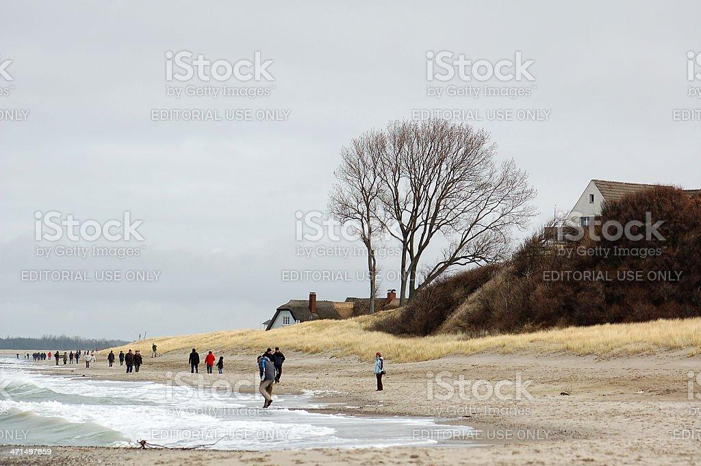 People walking along at Baltic Sea beach Darss peninsulas royalty-free stock photo