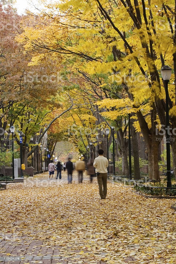 People walking in autumn park royalty-free stock photo