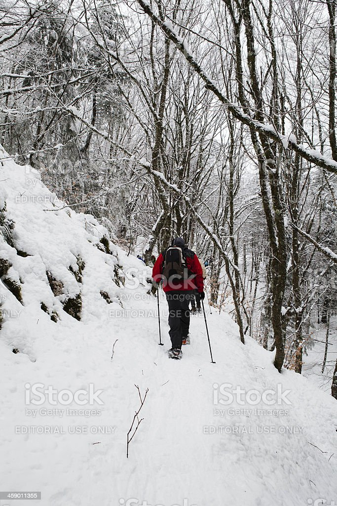 People walking in the Snow royalty-free stock photo