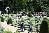 people walking through a rose garden on the Marienberg Brandenburg
