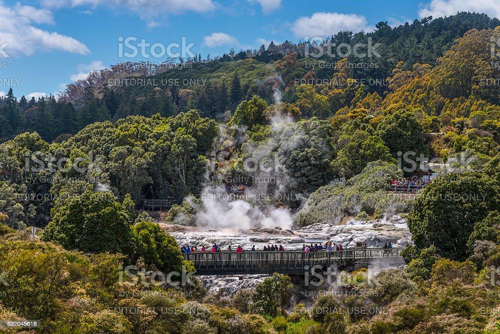 People watching Pohutu Geyser in Rotorua, New Zealand stock photo