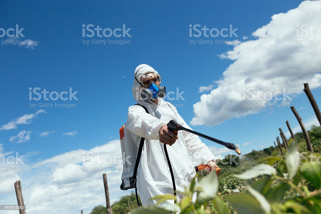 People workers in agriculture business stock photo