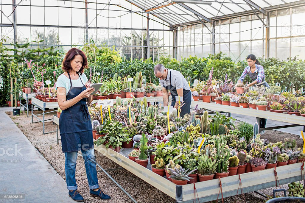 People working at greenhouse stock photo