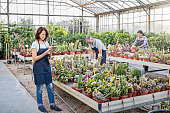 People working at greenhouse