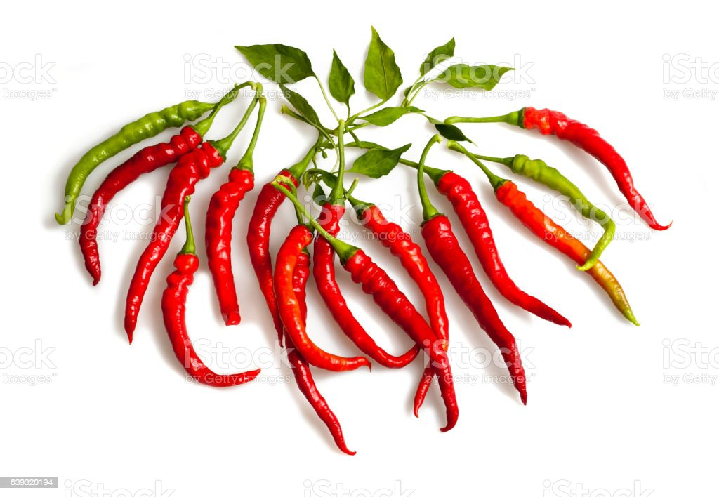 Pepper group isolated stock photo