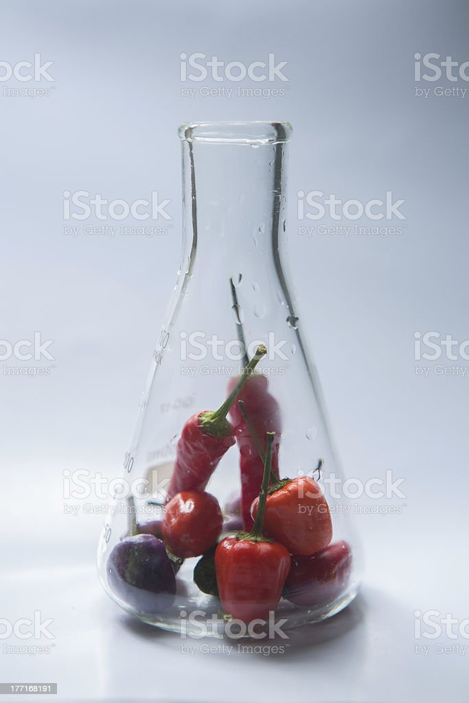 Pepper Science royalty-free stock photo