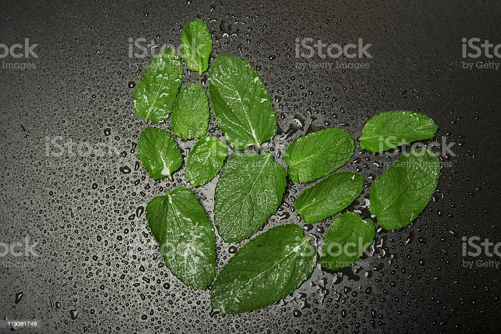 Peppermint heart with water drops on black background. royalty-free stock photo