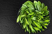 Peppermint. Juicy, fresh, aromatic green mint