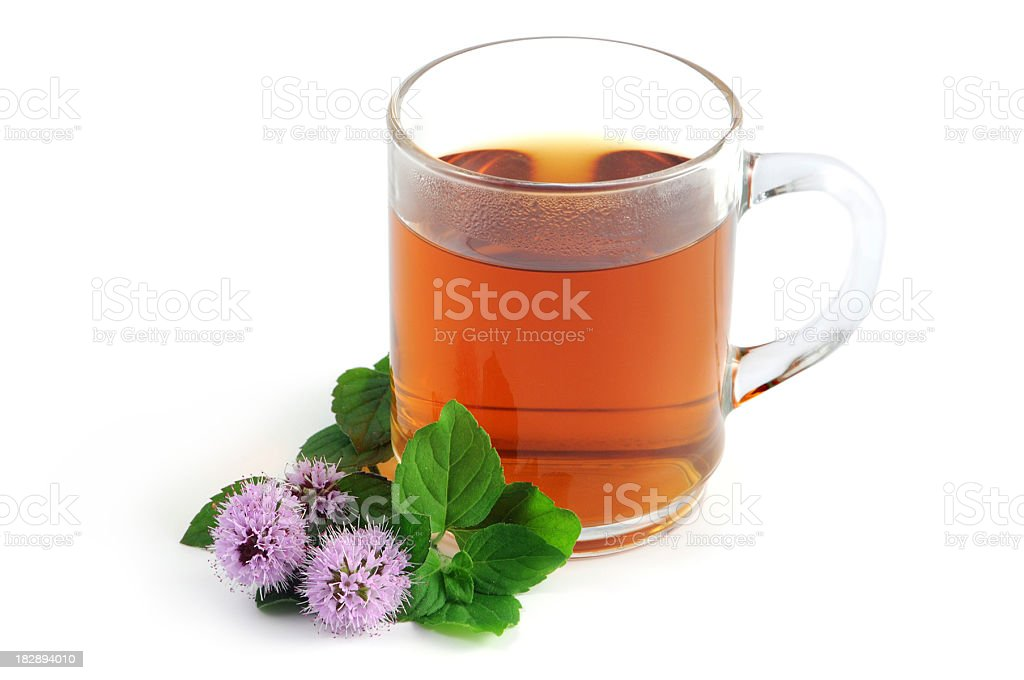 Peppermint tea Pfefferminztee mit Pfefferminzblüten stock photo