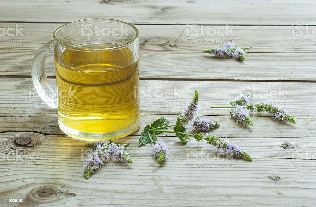 Peppermint tea royalty-free stock photo