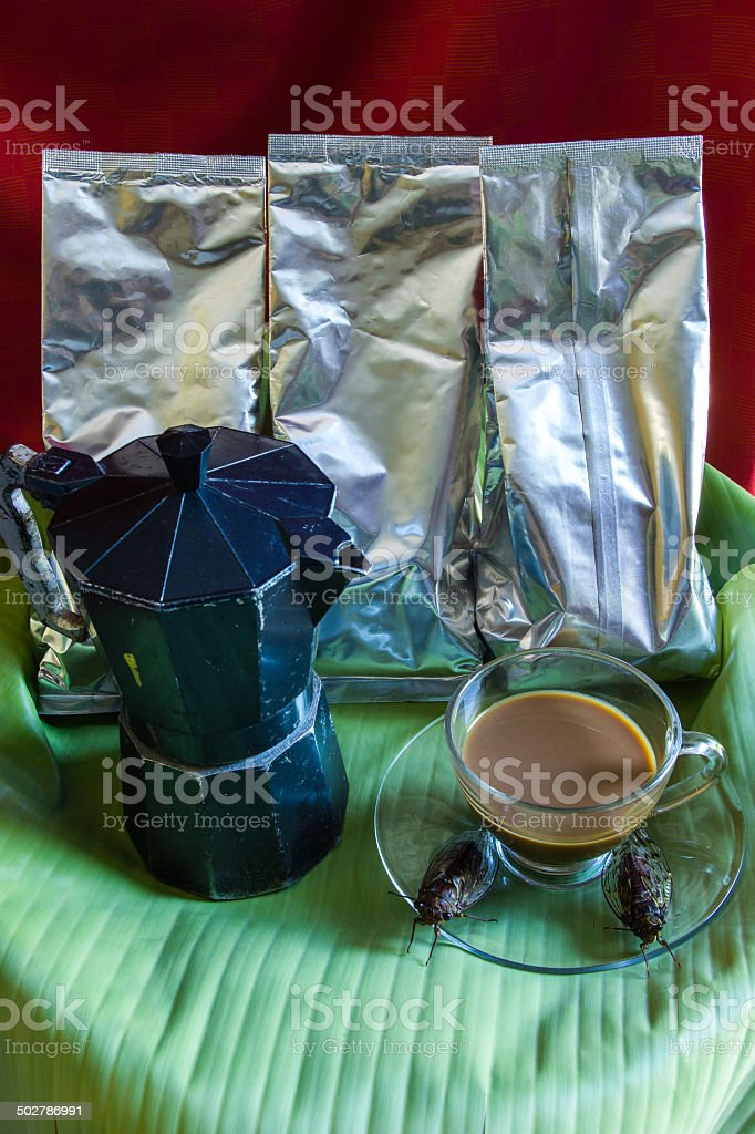 Percolator  and coffee with cicada stock photo