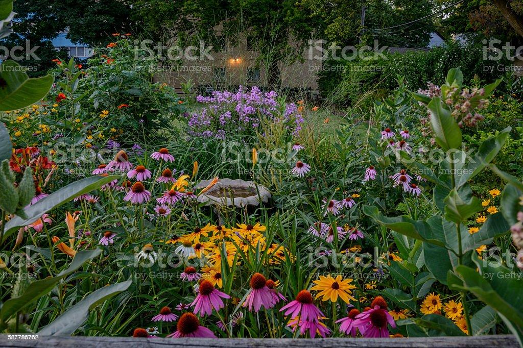 Perennials garden. stock photo
