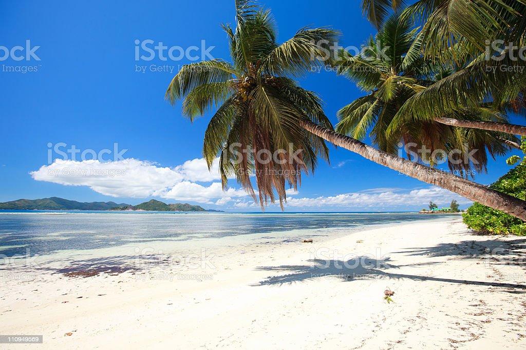 Perfect beach in Seychelles stock photo